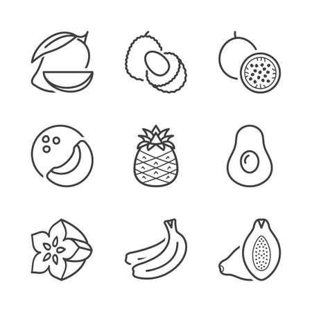 exotic fruits: basic tropical and exotic fruits, thin line icons set. isolated. black color