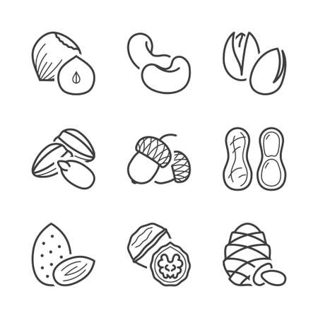 pine nut: basic nuts thin line icons set. isolated. black color