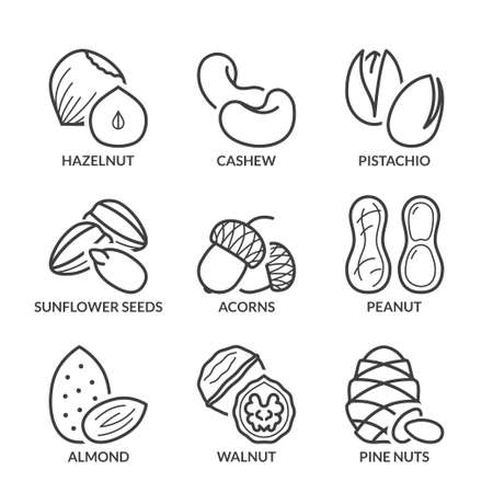 pistachio: basic nuts thin line icons set. isolated. black color