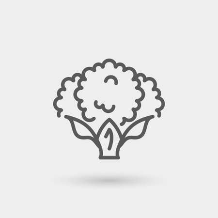 cotton fabric: cotton thin line icon. concept of agriculture, natural fabric, isolated