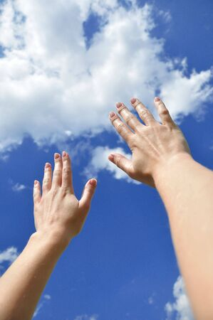 Female hands reach for the sky Stock Photo - 5247687