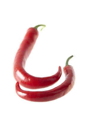 Chili pepper isolated on white background, hot Stock Photo - 6595433