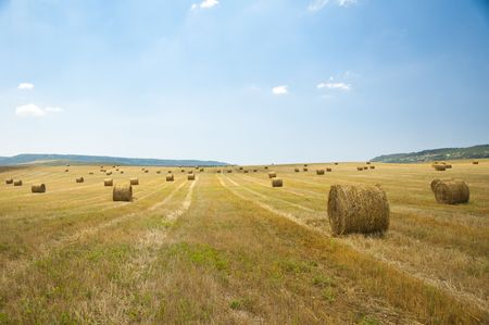 stack of straw on the mown field beneath a blue sky, Tuscany Stock Photo - 7660913