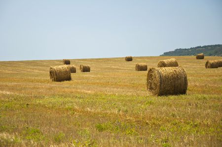 stack of straw on the mown field beneath a blue sky, Tuscany Stock Photo - 7660908