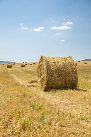 stack of straw on the mown field beneath a blue sky, Tuscany Stock Photo - 7660919