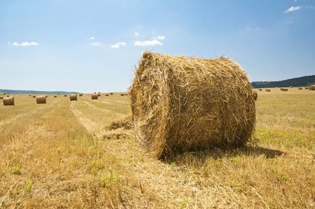 stack of straw on the mown field beneath a blue sky, Tuscany Stock Photo - 7660922