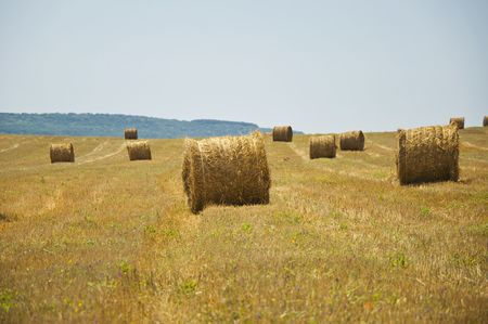 stack of straw on the mown field beneath a blue sky, Tuscany Stock Photo - 7660909