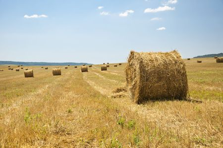 stack of straw on the mown field beneath a blue sky, Tuscany Stock Photo - 7744615