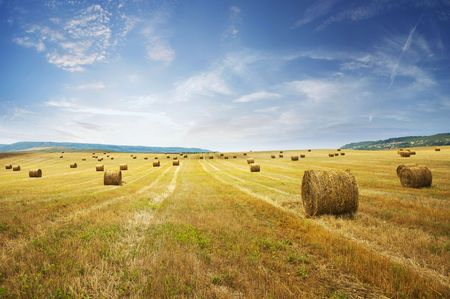hay bales: stack of straw on the mown field beneath a blue sky, Tuscany