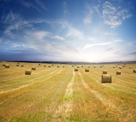 stack of straw on the mown field beneath a blue sky, Tuscany Stock Photo - 7744668