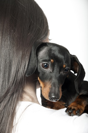 portrait of black and brown dachshund on the shoulder of a girl Stock Photo - 8864858