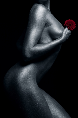 naked statue: naked female body in a silver body painting with red gerbera