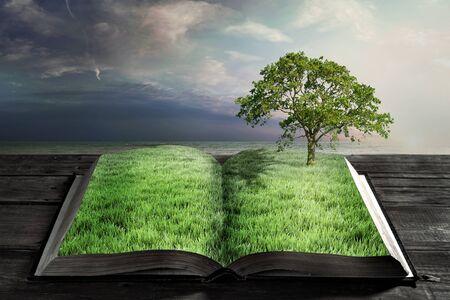 historias biblicas: libro abierto con hierba verde y árbol grande