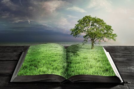 open book with green grass and big tree Stock fotó