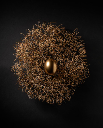 shimmery: A stylized golden egg in a golden nest on a black background