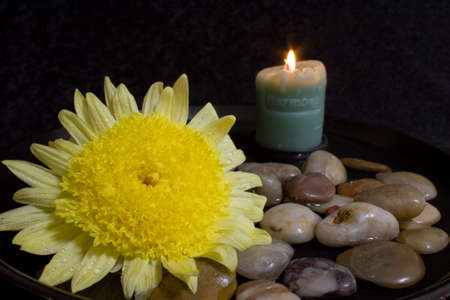 Still life with a lit Harmony candle and a large yellow flower with dew drops in a water and stone setting
