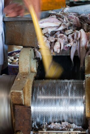 minced fish in grinder workplace photo