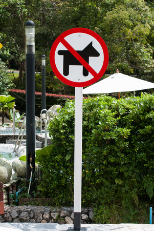 A No Dogs Allowed sign in the garden photo