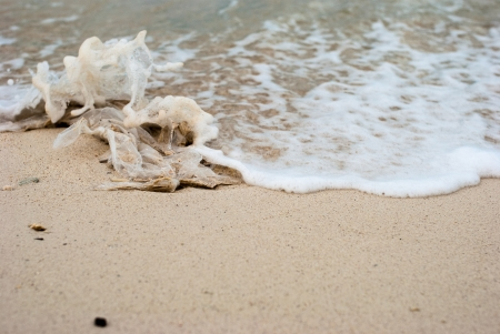Close up plastic bag waste on the beach with sand and sea water photo