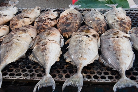 Fish on the grill at market for sale  photo
