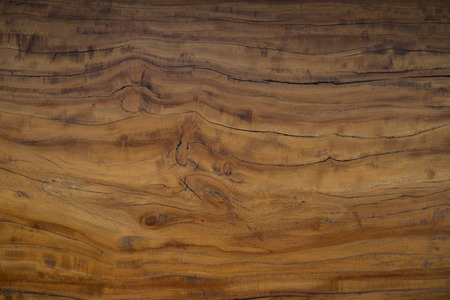 texture of bark wood use as natural background , close up