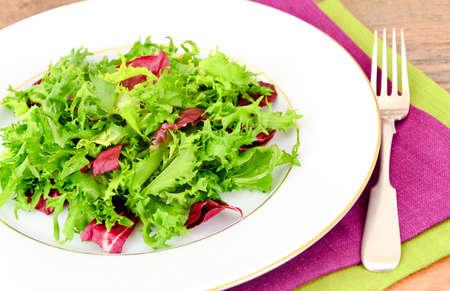 Salad Mix Batavian, Frise, Radicchio, Chicory and Dietary Mel. Studio Photo