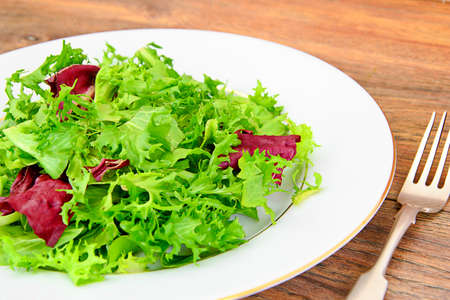 dietary: Salad Mix Batavian, Frise, Radicchio, Chicory and Dietary Meal