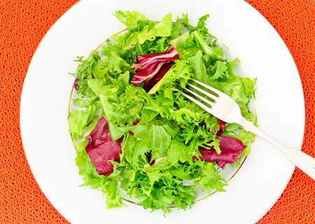 escarola: Salad Mix  Batavian, Frise, Radicchio, Chicory, Dietary Meal