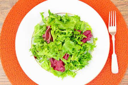 Salad Mix  Batavian, Frise, Radicchio, Chicory, Dietary Meal