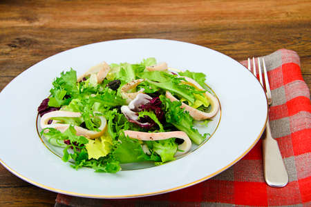 escarola: Salad Mix Batavian, Frise, Radicchio, Chicory, Squid  Dietary Meal Studio Photo Foto de archivo