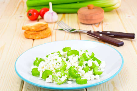 dietary: Dietary Dish of Granulated Cottage Cheese and Celery Studio Photo