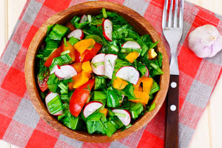 ensalada tomate: Spinach Salad with Leek, Radish, Tomato, Pepper and Vegetable Oil Foto de archivo