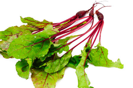 Fresh Young Beets Sudio Photo Stock Photo
