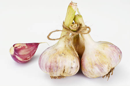 Young Garlic on a White Background Studio Photo Stock Photo