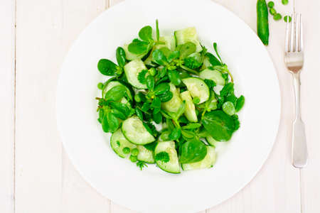Salad with Cucumber, Purslane and Green Peas on Dark Disks Studio Photo