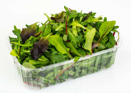 Healthy eating of arugula, mitsuna, chard, red mustard in plasti Stockfoto
