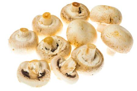 Fresh unwashed champignons on white background. Stock Photo