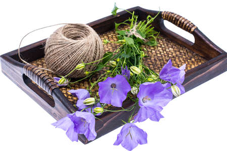 Wooden tray with blue wild flowers Stock Photo