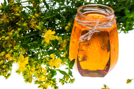 St. Johns wort in glass jar on white background. Stock Photo