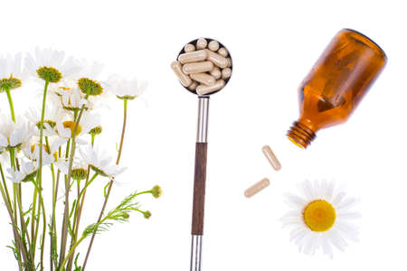 Medicinal plant Camomile pharmacy in capsules