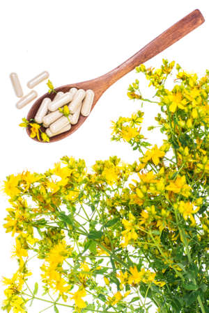 Natural capsules from St. Johns wort Stock Photo