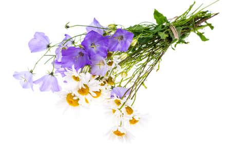 흰색 배경에 야생화의 꽃다발 스톡 콘텐츠