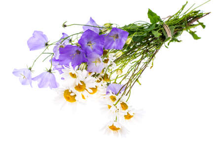 Bouquet of wildflowers on white background