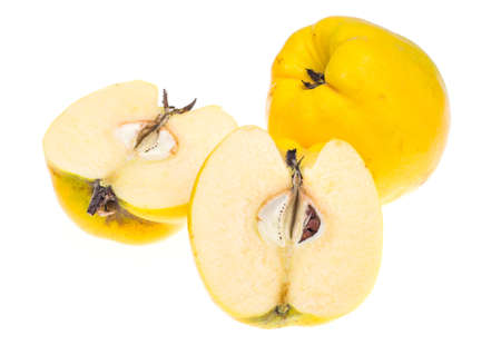 membrillo: Membrillo fragante amarillo sobre fondo blanco