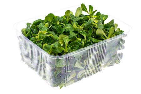 Fresh root salad in container. Studio Photo