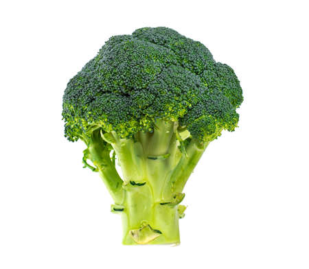 Head of green broccoli isolated on white background Stockfoto
