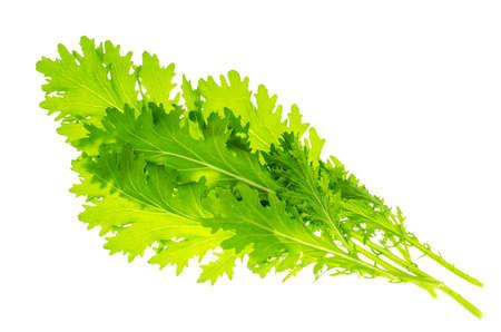 Leaves of fresh green salad. Studio Photo