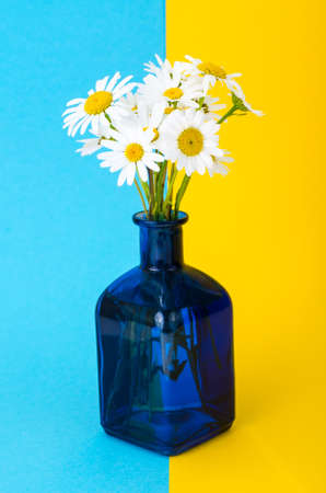 Small bouquet of white daisies in vase Stock Photo