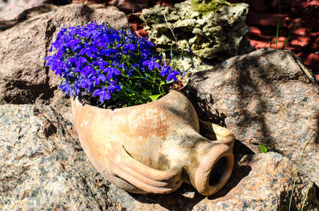 Clay jug of pots with blue flowers. Studio Photo Archivio Fotografico