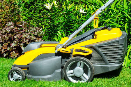 Care of garden. Lawn mowing with lawn mower. Studio Photo Stockfoto